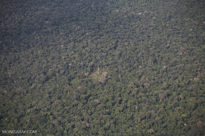 Aerial photo of shifting cultivation in the Amazon rainforest [colombia_1330]