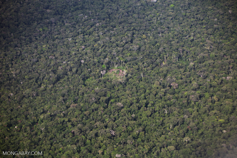 Aerial view of subsistence agriculture and rainforest in the Amazon
