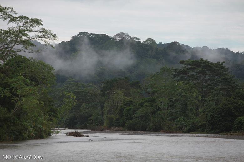 River near Penalosa [colombia_1904]