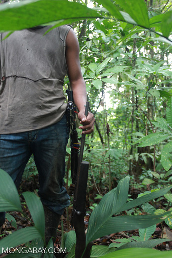 Subsistence hunter in the rainforest