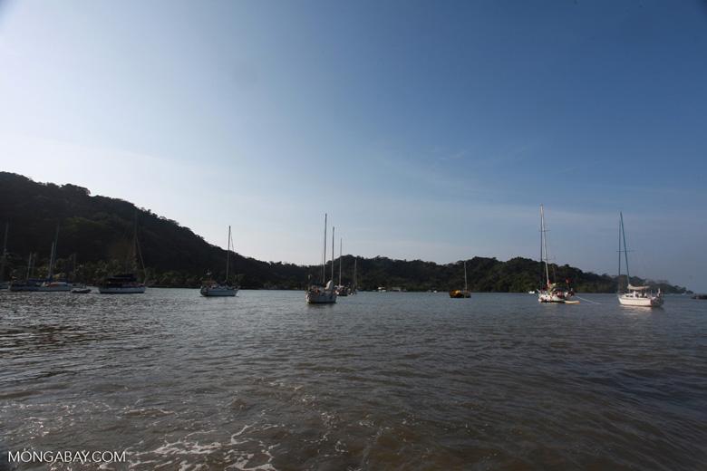 Sapzurro harbor