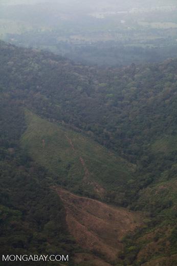 Mosiac deforestation in coastal Colombia