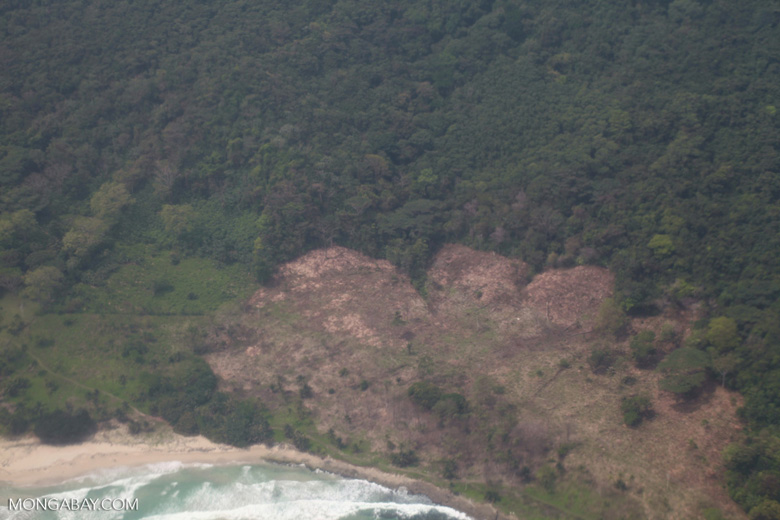 New deforestation for cattle pasture in coastal Colombia