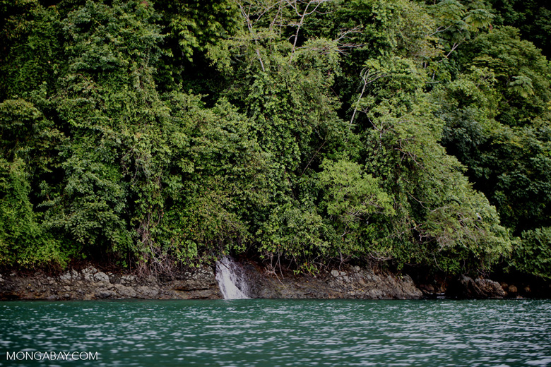 Waterfall entering the turquoise sea and rainforest of Isla Gorgona
