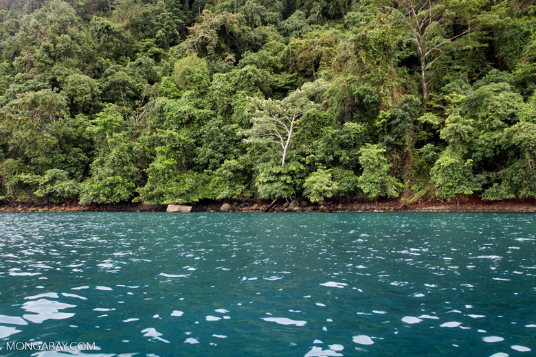 Turquoise ocean and rainforest of Isla Gorgona