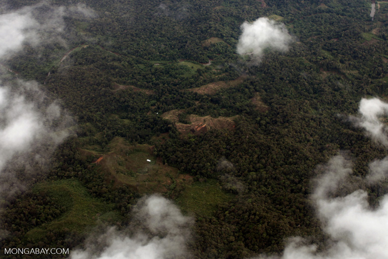 Deforestation in Colombia's Choco