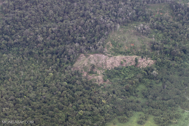 Deforestation in Colombia's Choco [colombia_3931]