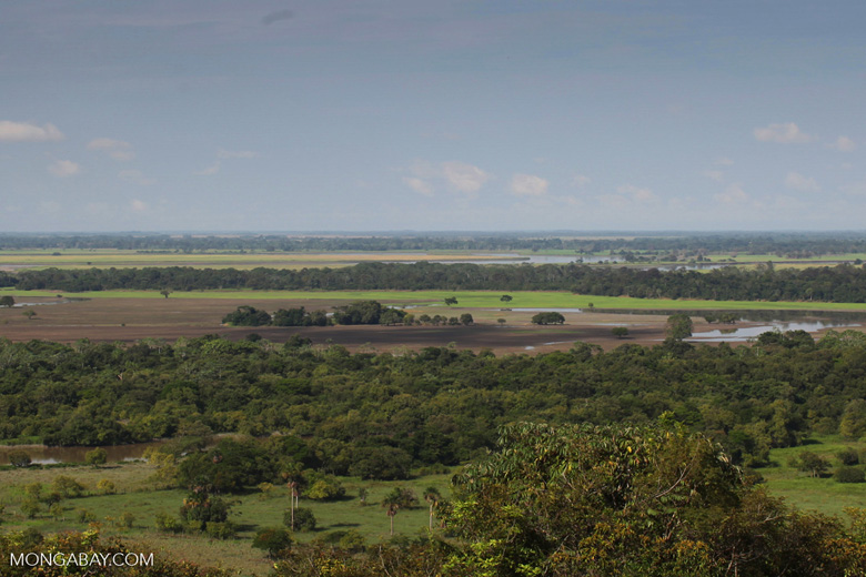 Colombia's llanos: ranches, farms, and forest