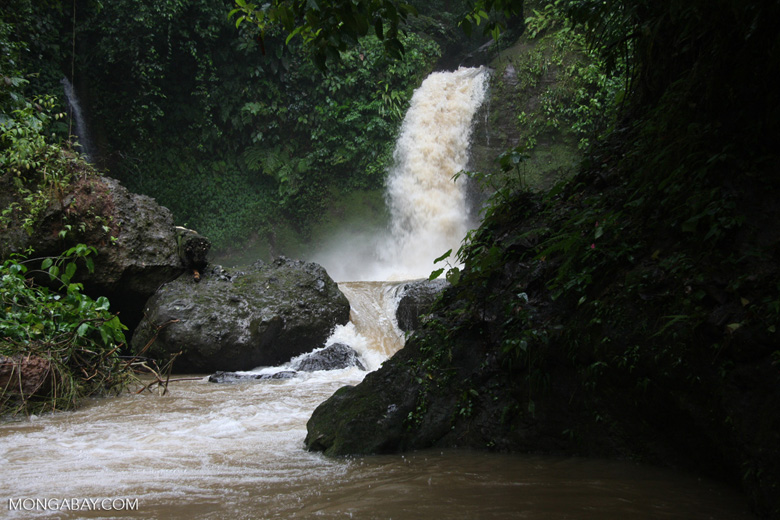 Raging waterfall near Leaves and Lizards [costa-rica-d_0078]