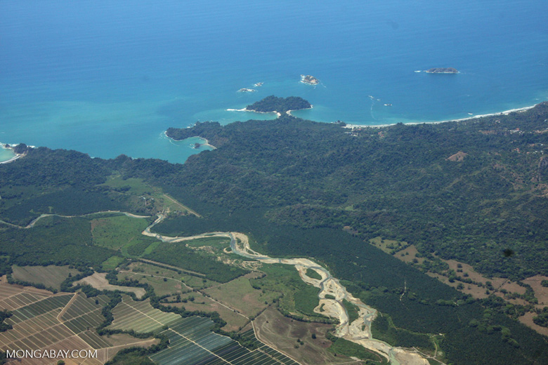 Aerial view of oil palm plantations and Manuel Antonio National Park