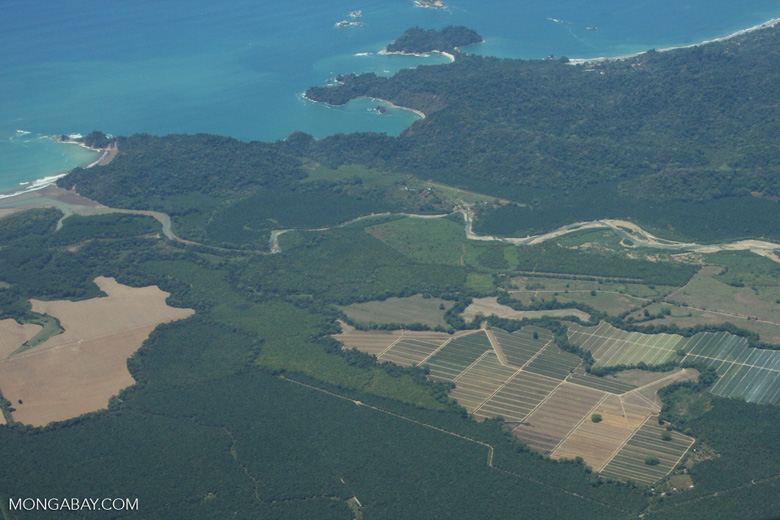 Aerial view of oil palm plantations and Manuel Antonio National Park [costa-rica-d_0211]