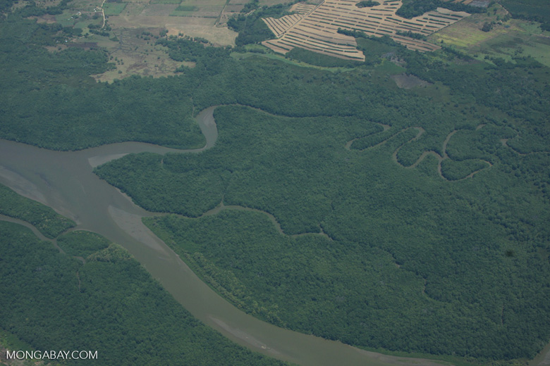 Aerial view of estuary, forests, and agriculture [costa-rica-d_0234]
