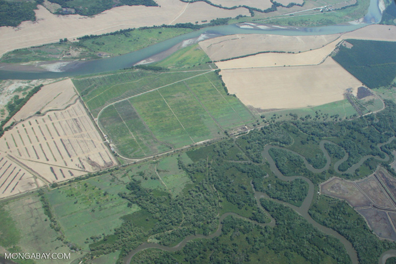 Aerial view of estuary, forests, and agriculture [costa-rica-d_0237]
