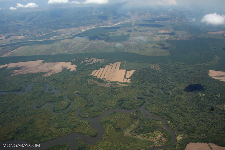 Deforestation, oil palm, forest, and wetlands in Costa Rica [costa-rica-d_0261]