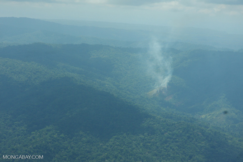 Aerial view of agricultural fire near Corcovado [costa-rica-d_0272]