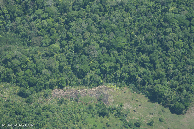 Aerial view of a forest edge in Costa Rica [costa-rica-d_0275]