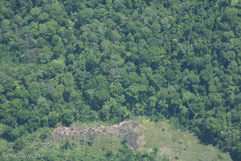 Aerial view of a forest edge in Costa Rica [costa-rica-d_0276]