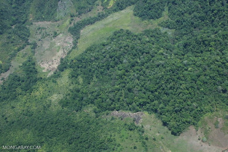 Aerial view of a forest margin in Costa Rica