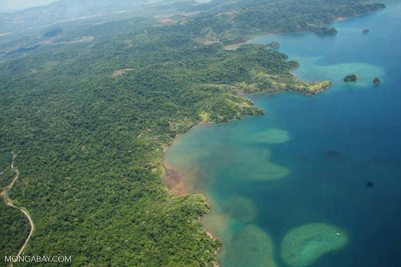 Aerial view of coastal forest and coral reefs in Costa Rica