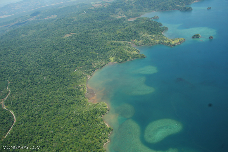 Aerial view of coastal forest and coral reefs in Costa Rica [costa-rica-d_0297]