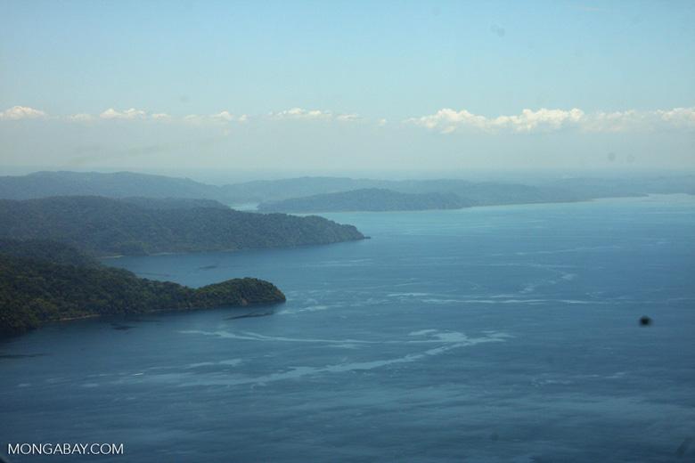 Aerial view of Golfo Dulce peninsula