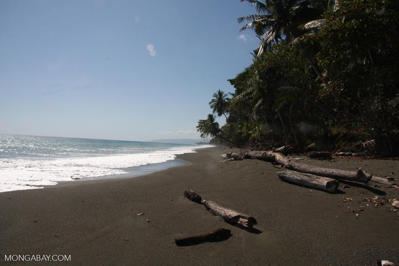 Dark sand beach of the Osa Peninsula