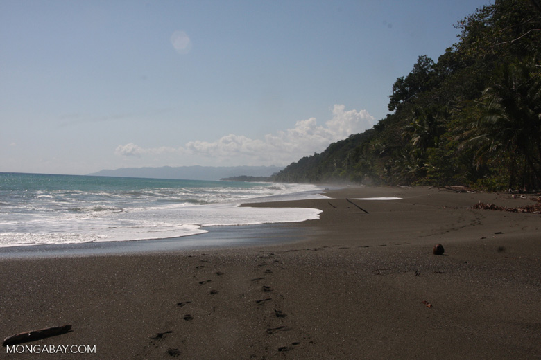 Dark sand beach of the Osa Peninsula [costa-rica-d_0312]