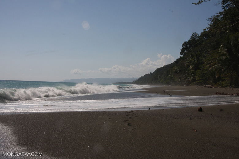 Dark sand beach of the Osa Peninsula [costa-rica-d_0314]