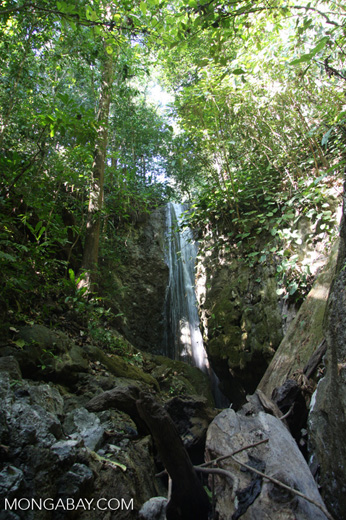 Waterfall on el Remanso grounds