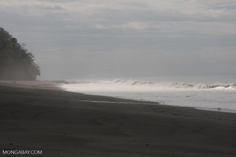 Dark sand beach of the Osa Peninsula [costa-rica-d_0327]