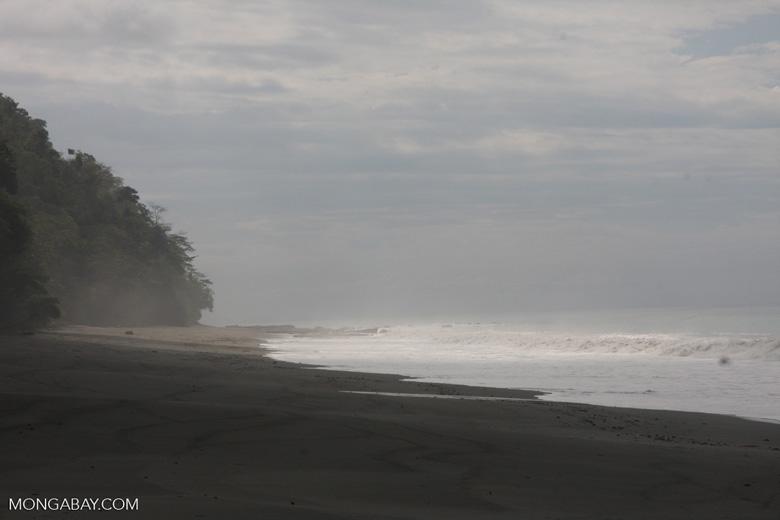 Dark sand beach of the Osa Peninsula [costa-rica-d_0328]