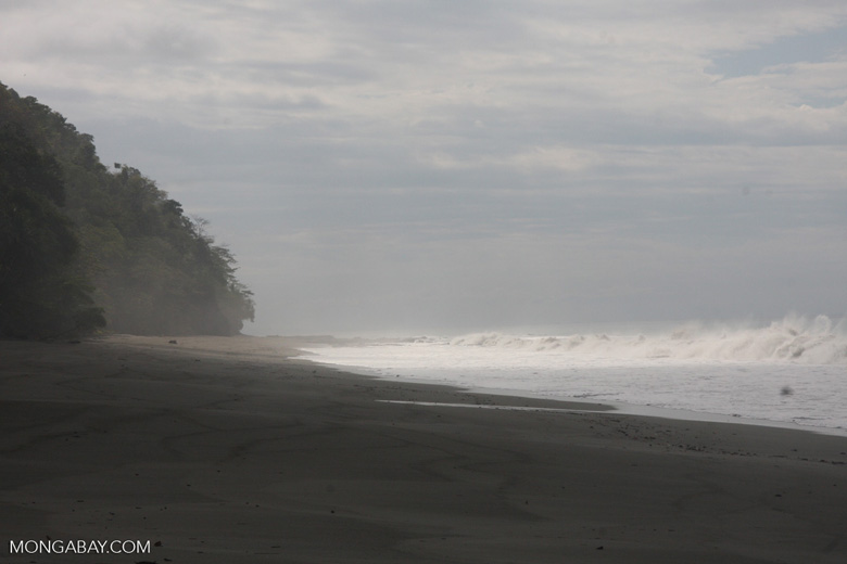 Dark sand beach of the Osa Peninsula [costa-rica-d_0329]