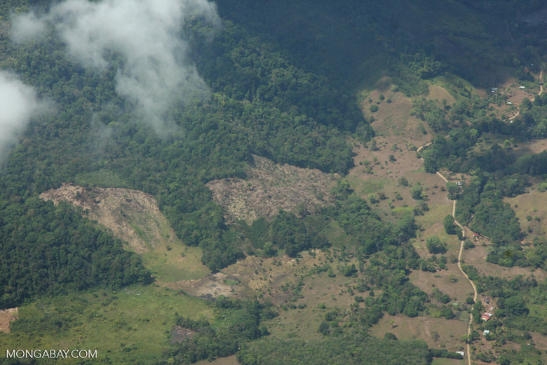 Overhead view of deforestation near the Osa Peninsula