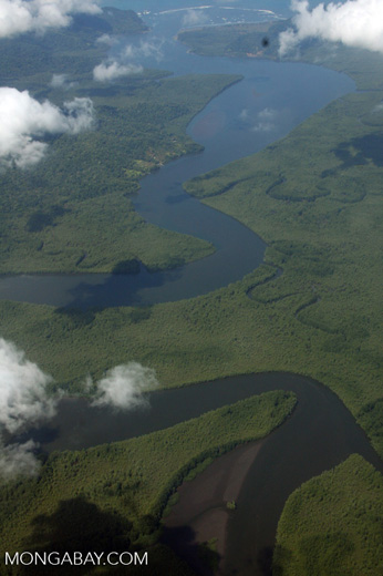 Wetlands area near the Osa Peninsula [costa-rica-d_0663]