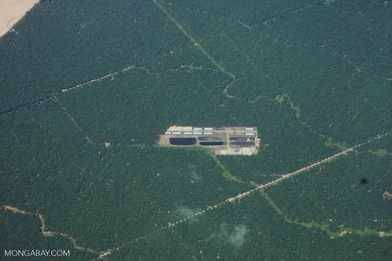 Overhead view of palm oil mill and holding ponds in Costa Rica [costa-rica-d_0699]