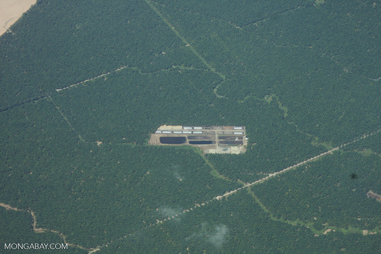 Overhead view of palm oil mill and processing facilities in Costa Rica