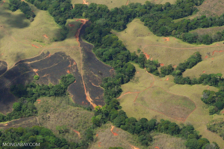 Aerial view of forest fragments in Costa Rica [costa-rica-d_0782a]