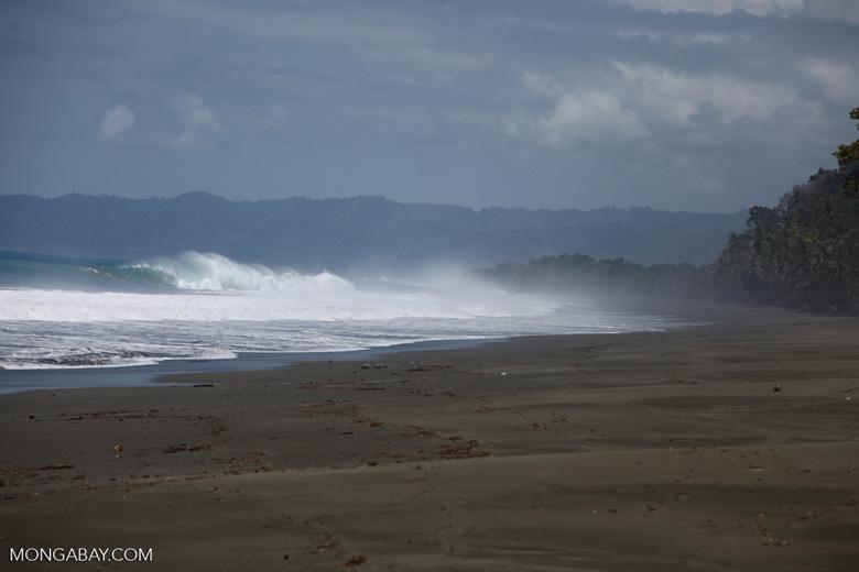 Osa beach [costa-rica_1075]