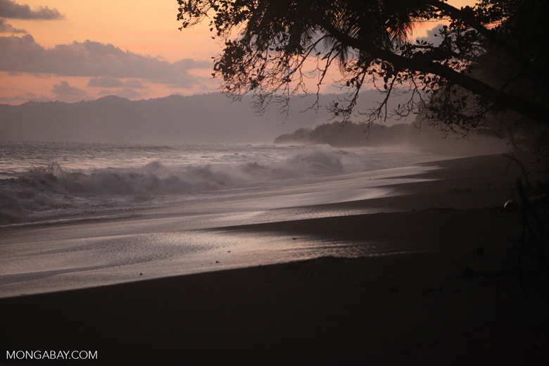 Sunset at an Osa Peninsula beach [costa-rica_1401]