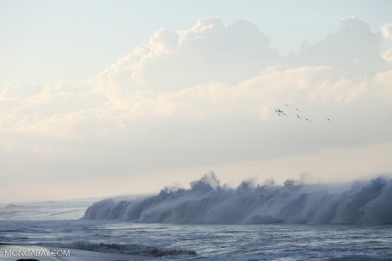 Crashing surf on a beach on the Osa Peninsula