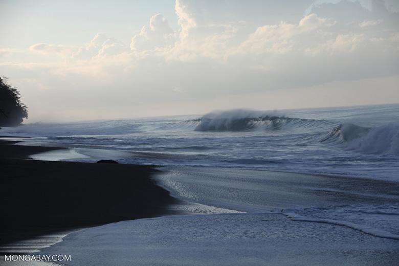 Osa peninsula beach [costa-rica_1442]
