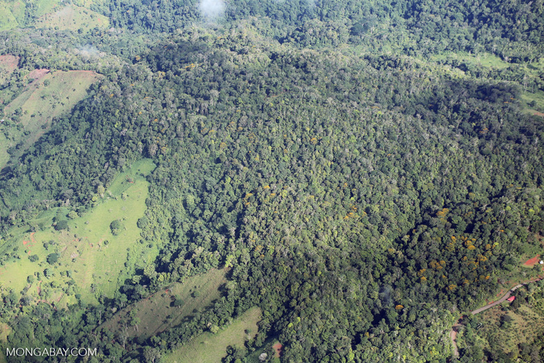 Aerial view of rain forest in Costa Rica [costa_rica_aerial_0044]