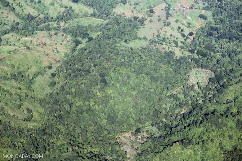 Aerial view of rain forest in Costa Rica [costa_rica_aerial_0050]