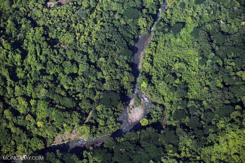 Aerial view of rainforest in Costa Rica [costa_rica_aerial_0081]