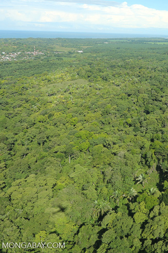 Airplane view of rain forest in Costa Rica