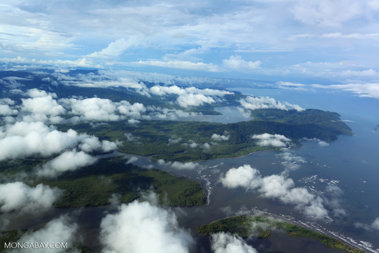 Airplane view of rainforest in Costa Rica [costa_rica_aerial_0270]