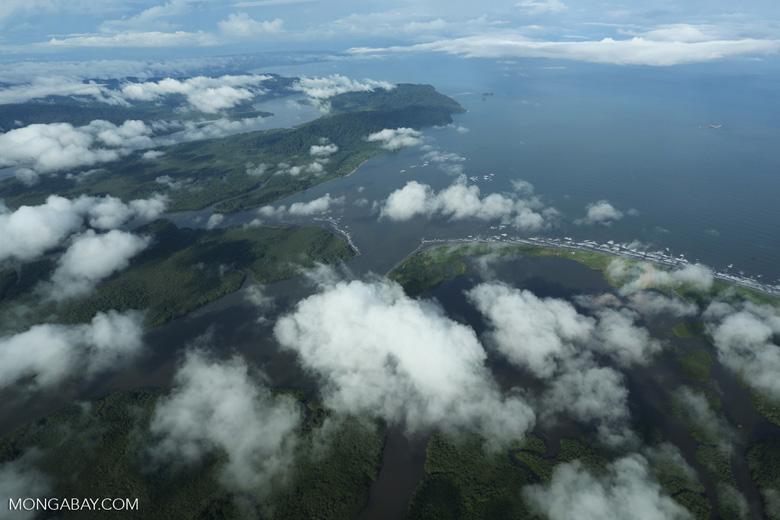 Aerial view of rain forest in Costa Rica [costa_rica_aerial_0273]