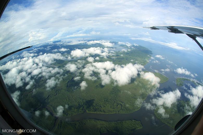 Aerial view of rain forest in Costa Rica [costa_rica_aerial_0279]