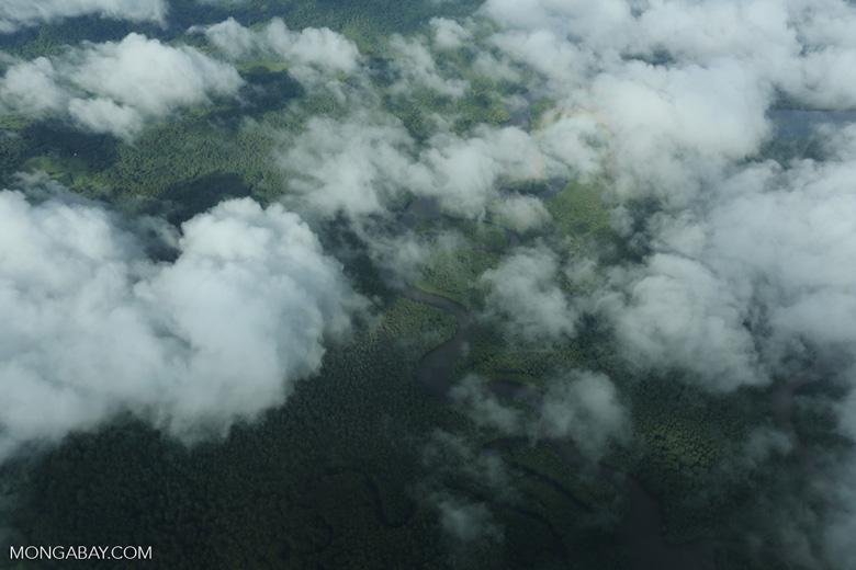 Overhead view of rainforest in Costa Rica [costa_rica_aerial_0292]