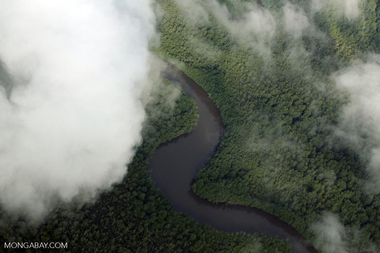 Airplane view of rainforest in Costa Rica [costa_rica_aerial_0294]
